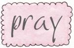 pink rect scallop pray